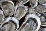 Vins Entre-deux-mers - Vignobles Teillet - à consommer avec les huitres